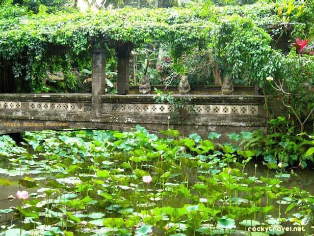 bali-lotuspod