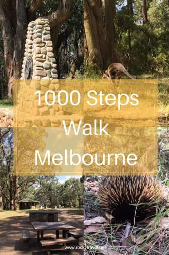 1000 Steps Dandenong - Day Hikes from Melbourne