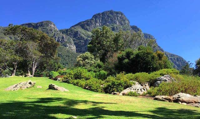 Kirstenbosch-Botanical-Gardens-Hike-Cape-Town
