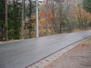 20061119-5.jpg