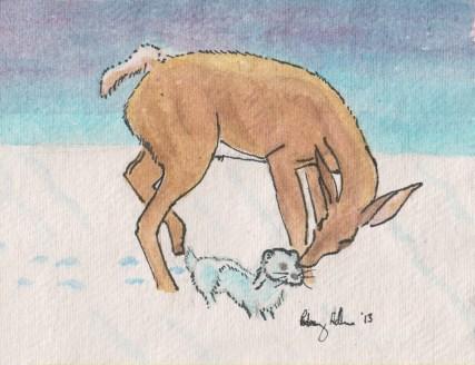 deer & ferret xmas 001