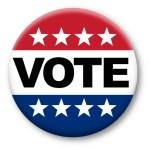 Google Voter Info