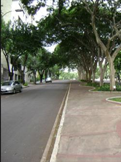 Avenida Barbacena