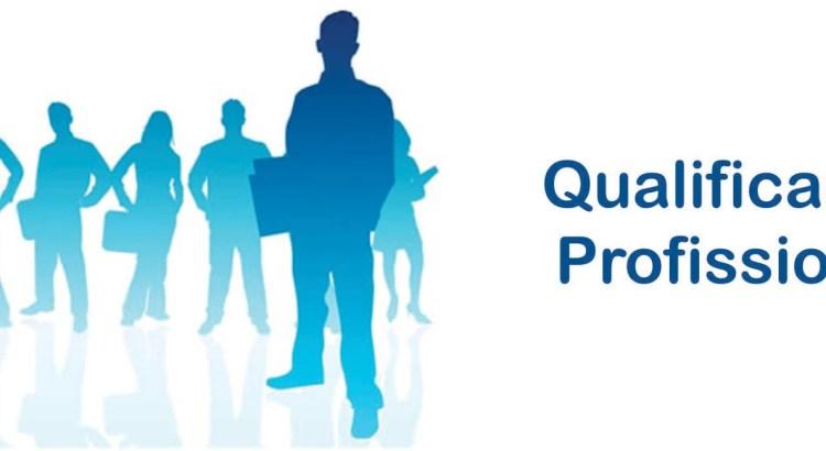 1_qualificao_profissional