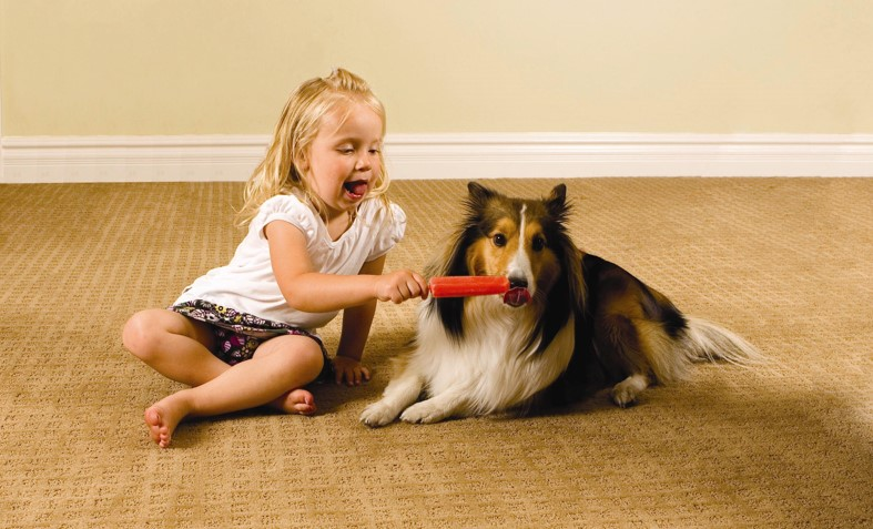 Clean Carpets, Spots Free