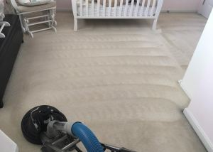 Deep Carpet Cleaning Louisville