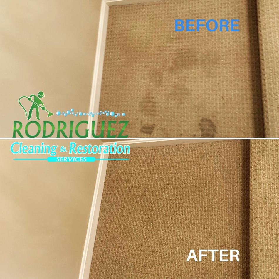 Best Carpet Cleaner Louisville KY