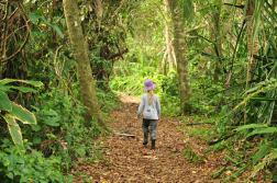 Oliwka przemierza lasy deszczowe w Tortuguero