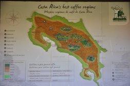 Plantacje kawy w Kostaryce
