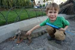 Kacper zaprzyjaźnia się z Iguaną w Ekwadorze