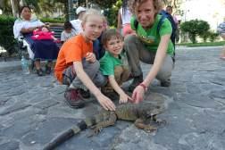 Rodzinka w podróży z Iguanami