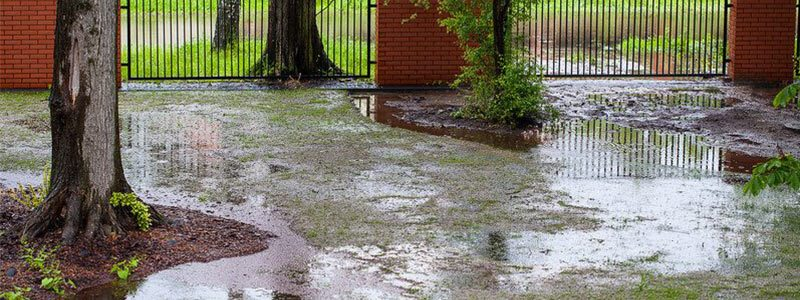 Bon How To Stop Flooding With These Landscape Drainage Solutions