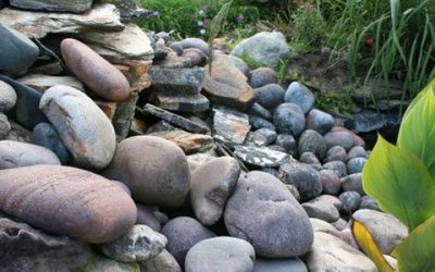 Enhance your Orlando Landscape with Rock
