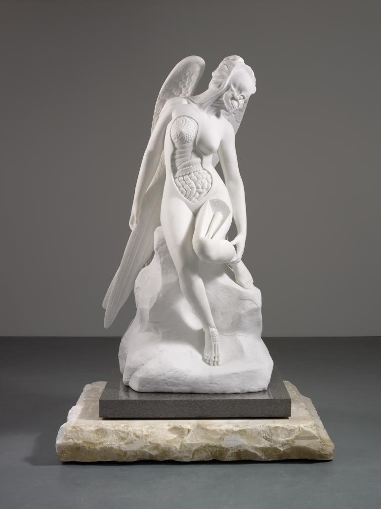 anatomy-of-an-angel