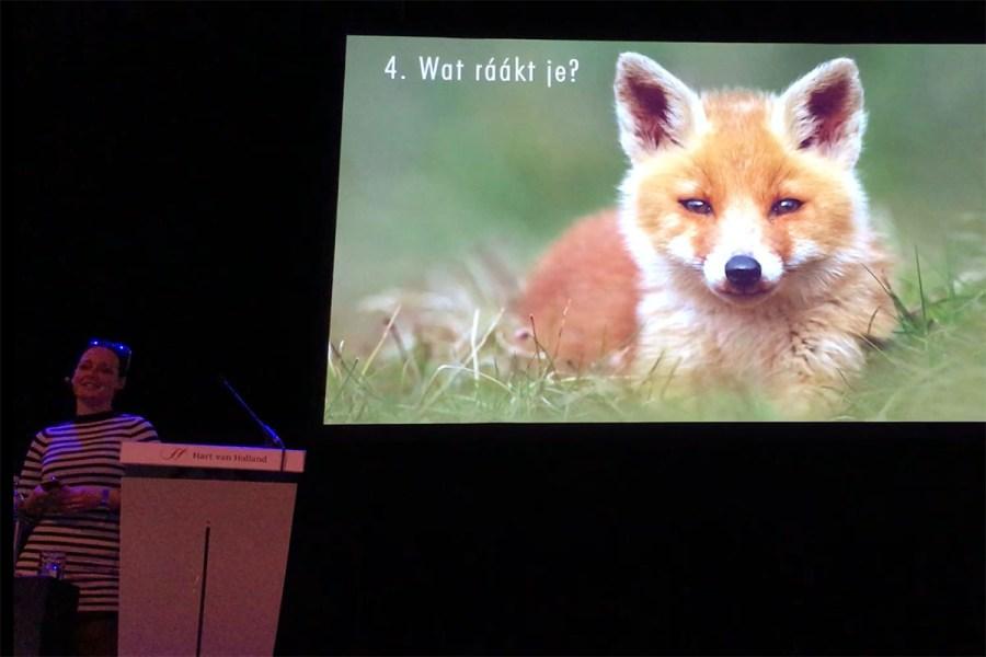 Foto presentatie / lezing Roeselien Raimond