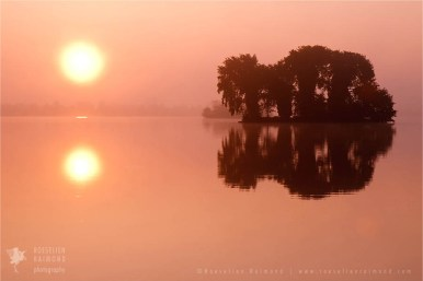 mist fog Netherlands scenery landscape mood water reflections atmosphere sunrise