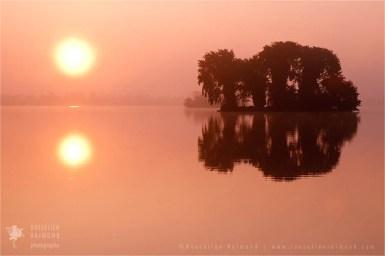 mist fog Netherlands scenery landscape mood water reflections atmosphere sunrise