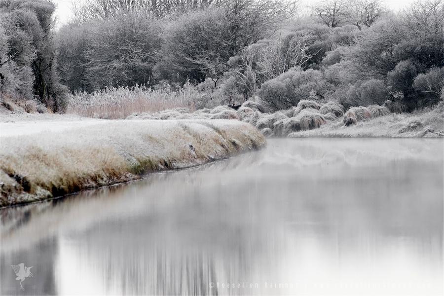 frost snow rime hoar winter white