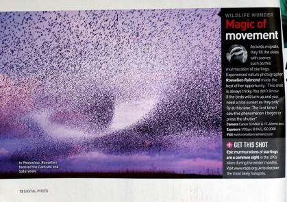 Publication Digital Photo - Starling Murmuration