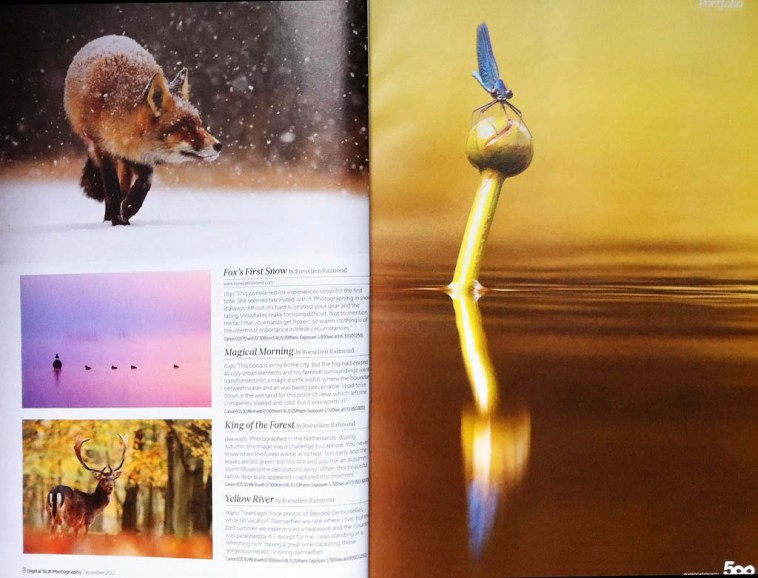 Digital SLR Magazine Portfolio Roeselien Raimond