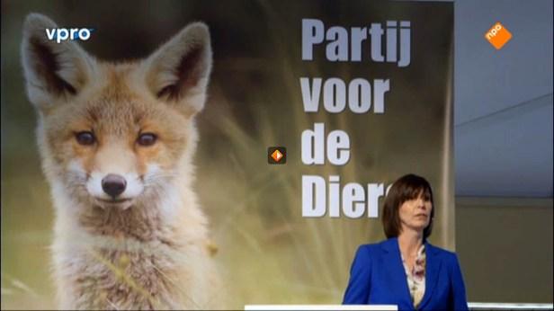 Partij voor de dieren NPO TV Vossenwelp