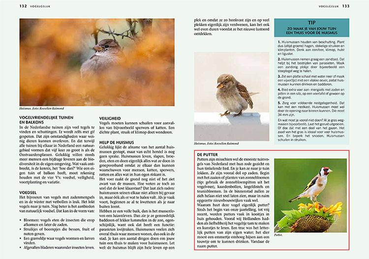 Vogels in Nederland Nationale Postcode Loterij - Huismus