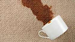 Roffey Cleaning Stain Removal Service in Southend