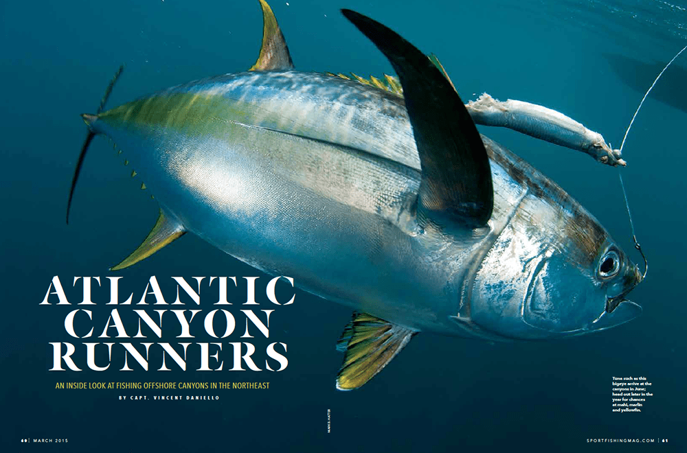 Atlantic Canyon Runners: An Inside Look at Fishing Offshore