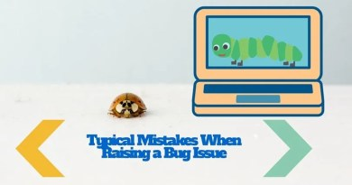 Typical Mistakes When Raising a Bug Issue