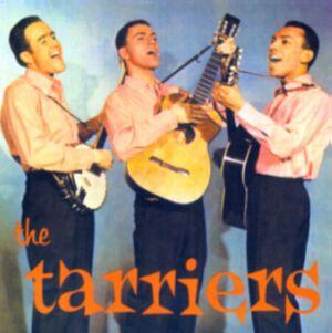tarriers