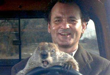 bill murray.groundhog-day-driving