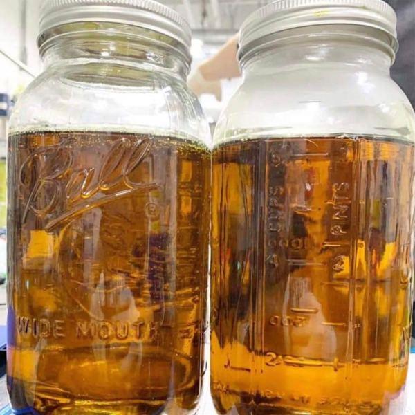 CBD Distillate by Rogue Bear Farms