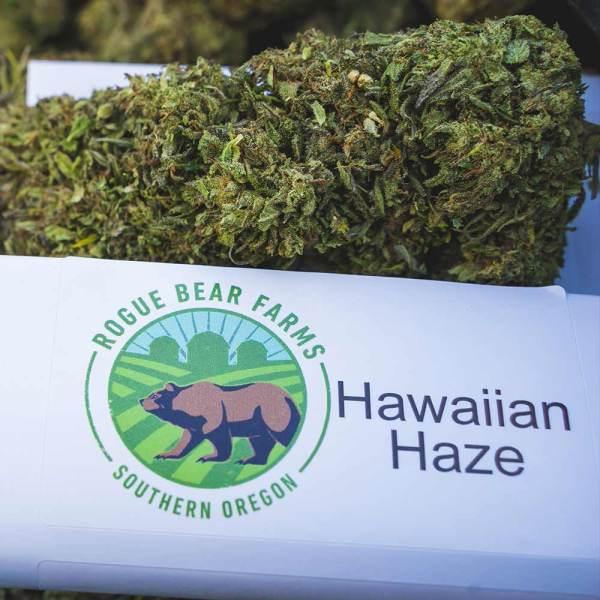 Hemp Flower Hawaiian Haze by Rogue Bear Farms