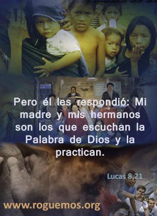lucas-08-21