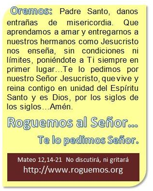 mateo-12-14-21-2016-07-16