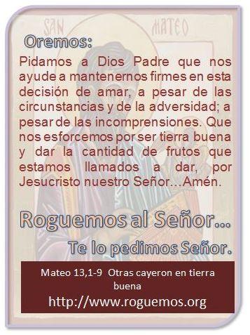 mateo-13-01-09