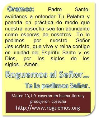 mateo-13-1-9-2016-07-20