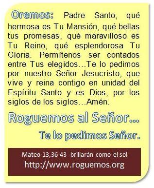 mateo-13-36-43-2016-07-26