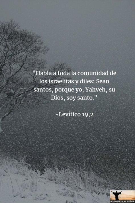 19_02_18_santos