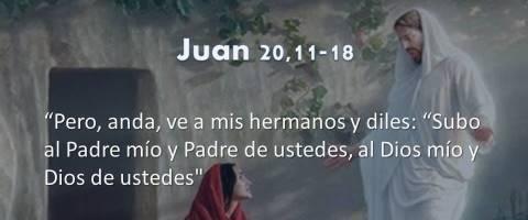 Juan 20,11-18 – ve a mis hermanos