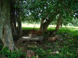 kaimur hills
