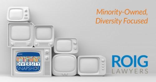 2019 Law360 Diversity Snapshot 2