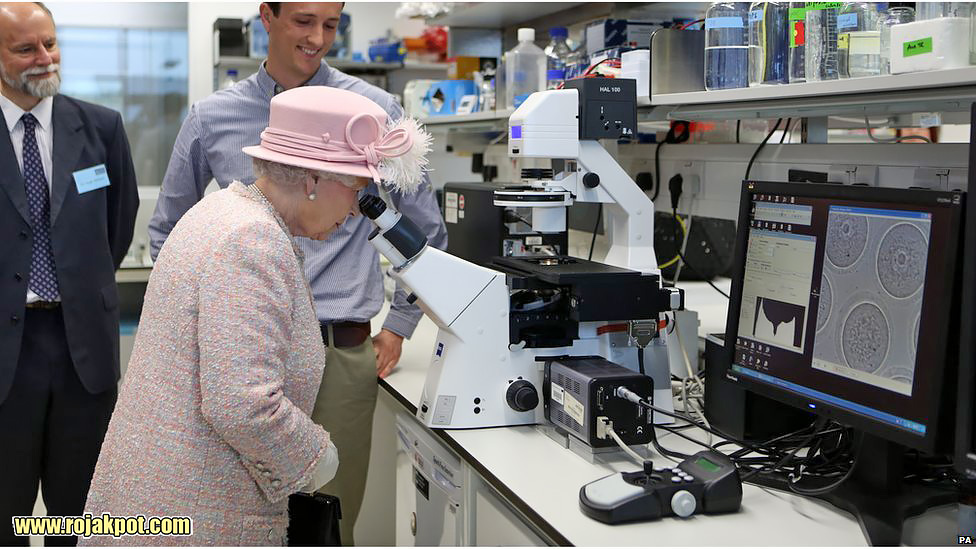 Queen Elizabeth II looks at mouse eggs through a microscope during a visit to the Medical Research Council in Cambridge. Chris Radburn/PA Wire