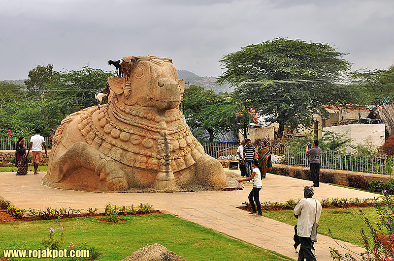 Nandi (bull) of Shiva at the Lepakshi Temple / Credit : Narasimha Prakash