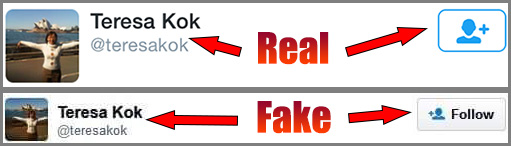 Comparison of the real and fake tweets by Teresa Kok