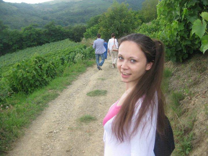 vinogradi 2