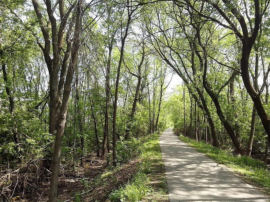 Ozaukee Trail