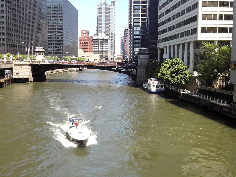 South Chicago River