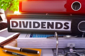 Dividends and dividend withholding tax