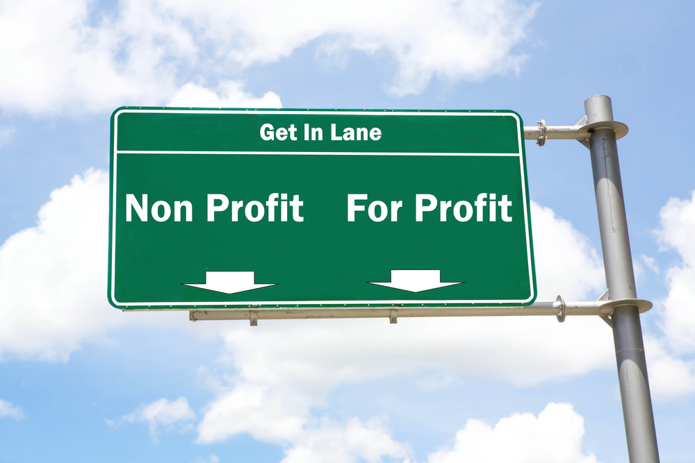 non profit vs for profit
